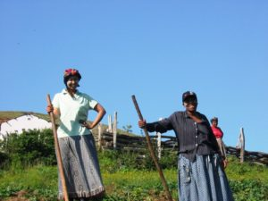 Charmaine and Kwela enjoying some morning farming